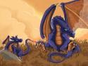 Dragoons, Etape 5
