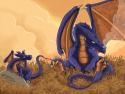 Dragoons, Etape 6